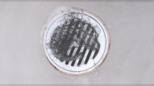 female hair loss in shower drain